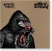 BaboonStrength
