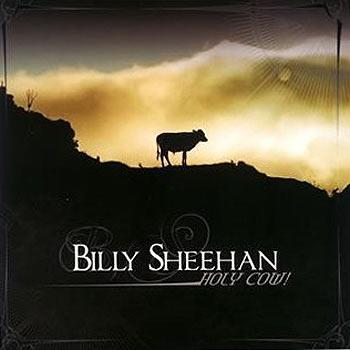 Billysheehan_holycow