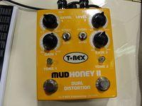 T-Rex Mudhoney II