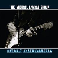 Michael Landau - Organic Instrumentals